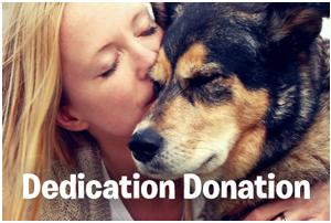 dedication-donation