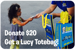 totebag-donation